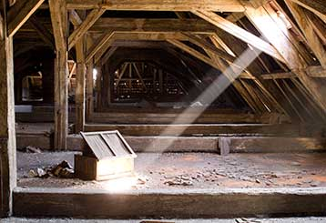 Signs Your Attic Needs Cleaning | Laguna Beach, CA
